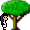 Big Tree icon